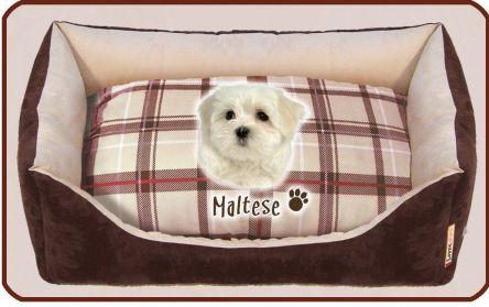 Cucce per cani maltese british arredo e corredo - Cuccia per cani interno ...